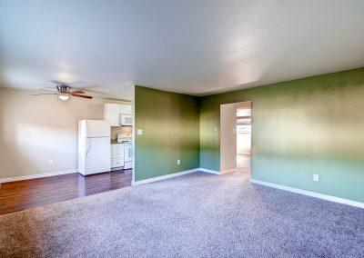 213233 S Ingalls Street-print-007-11-Living Room-2700x1803-300dpi